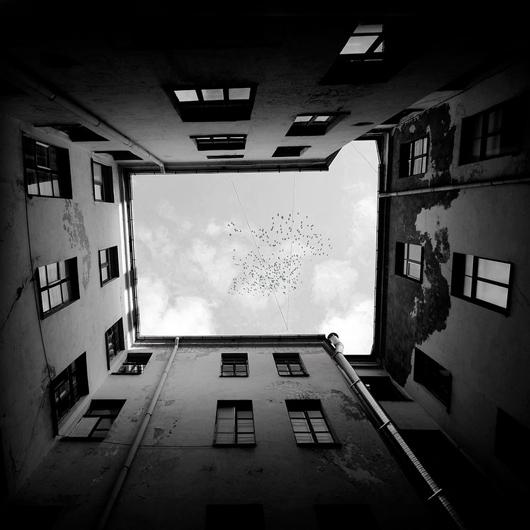 window 35 increibles fotografias conceptuales en blanco y negro